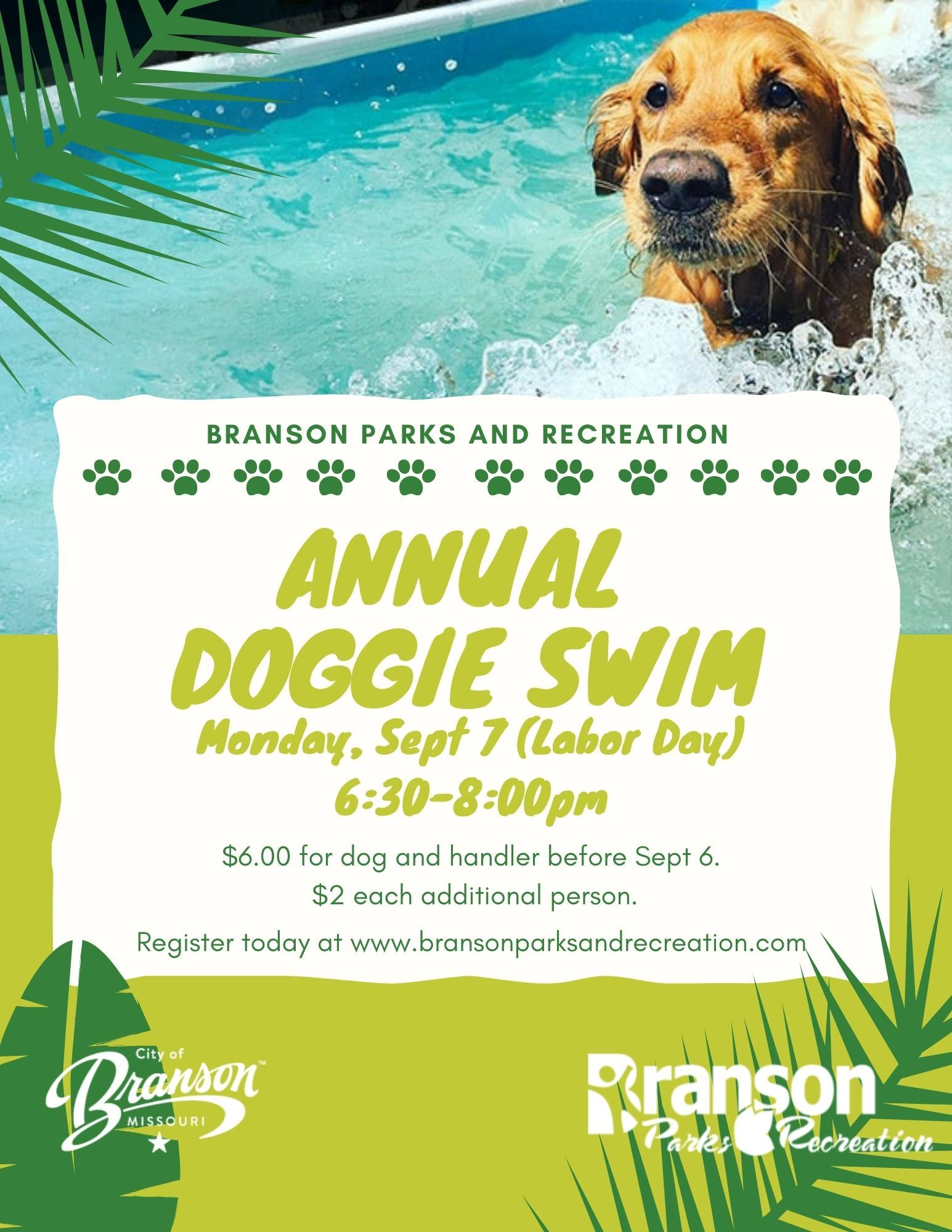 Annual Doggie Swim (1)